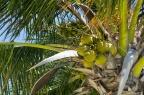 Cancun201404-024